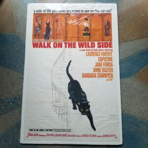 Movie Poster Walk on the Wild SIde